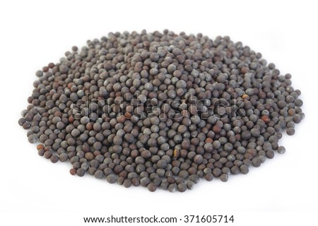 black mustard seeds on white background - stock photo