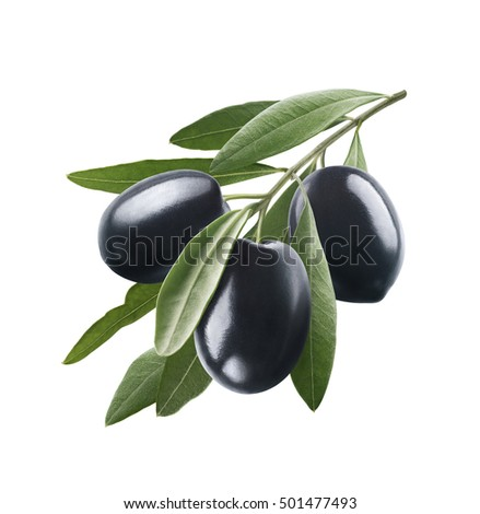 Black olives 3 with leaves isolated on white background as package design element
