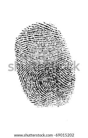 black on white isolated fingerprint - stock photo