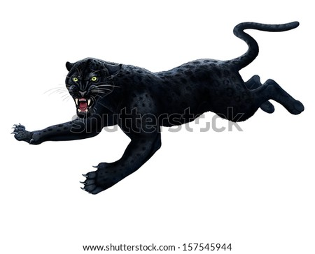 Black Panther Leaping Black Panther - stock photo