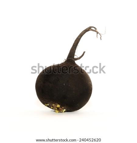 Black radish, A black radish (Raphanus niger) on the white backgrpund - stock photo
