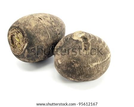 black radish on a white background - stock photo