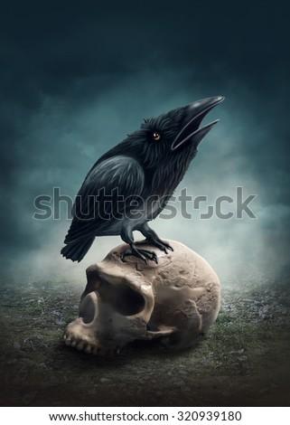 Black raven on the skull - stock photo