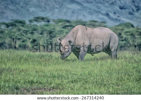 Black rhinoceros in Ngorongoro Crater, digital oil painting - stock photo