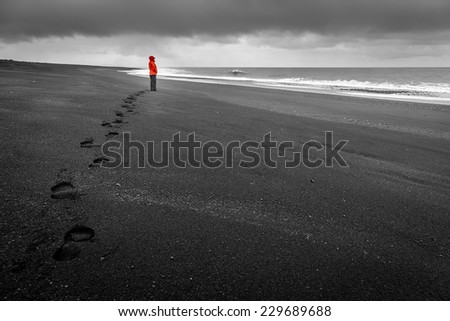 Black sand beach in Iceland - stock photo