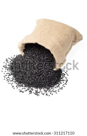 black sesame in the sack. (large depth of field, taken with tilt shift lens) - stock photo