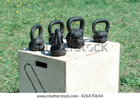 black, shiny iron weights in the form of a dog and cat heads, for weightlifting and fitness on a wooden box, in the open air on a background of green grass, sending. fitness concept - stock photo
