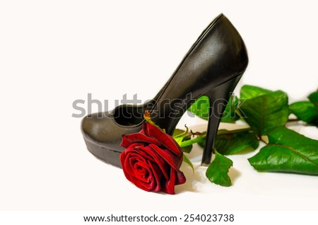 Black shoe and red rose on white background  - stock photo