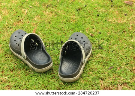 Black shoes lying on the green grass.