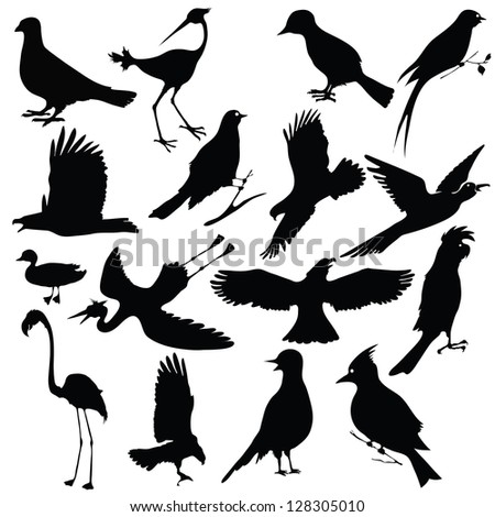 black silhouettes of birds for your design