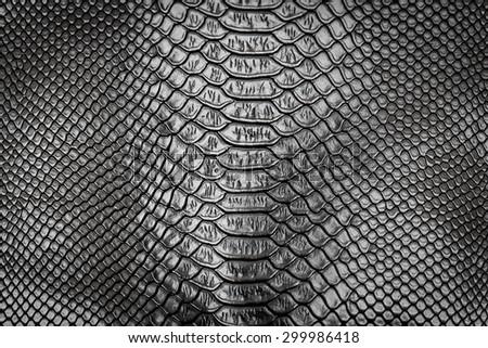 Black snake skin pattern texture background - stock photo