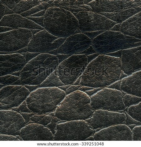 black snake skin texture  closeup - stock photo