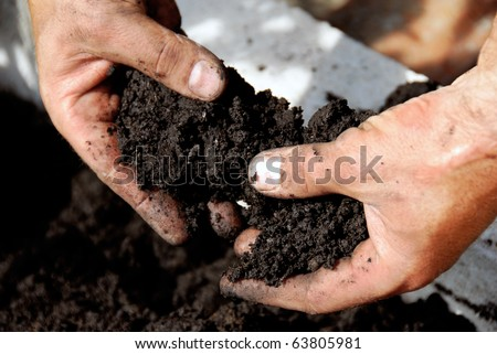 black soil in man hand closeup outdoor - stock photo