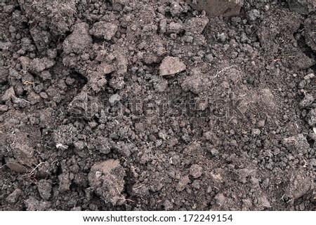 Black soil texture - stock photo