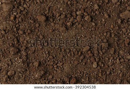 Black Soil Texture Background. Top View of a Dark Ground Surface. Close Up Macro View of Dirt and Stones. Text Space