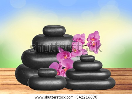 Black spa stones and pink orchid on wooden table over nature background - stock photo