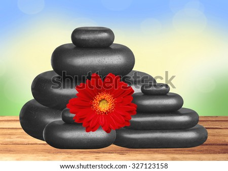 Black spa stones and red gerbera flower on wooden table over nature background - stock photo