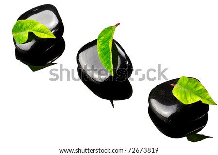 Black SPA stones with green leaf and reflection on glass