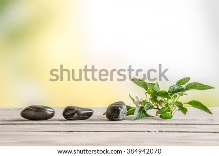 Black stones and a flower on a table in a garden - stock photo