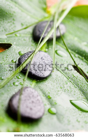 Black stones on green leaf with water drops - stock photo