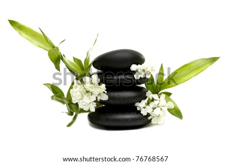 Black stones with green bamboo and white orchid - stock photo