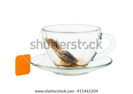 Black tea teabag in empty cup isolated on white background - stock photo
