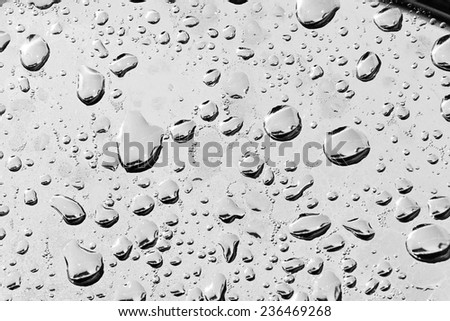 Black & white abstract macro view of water drops in various size, on a metal surface. The metal is sweating. - stock photo