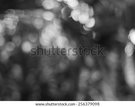 black&White background - stock photo