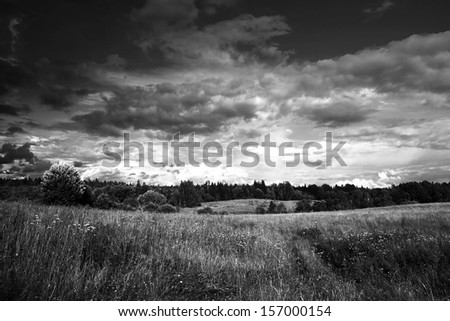 black white meadow and forest and dramatic sky with clouds - stock photo