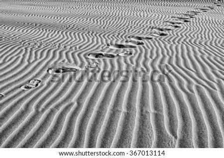 Black white sand dunes.Structure in the desert sand.Landscape of dunes background.Huge dunes of the desert. - stock photo