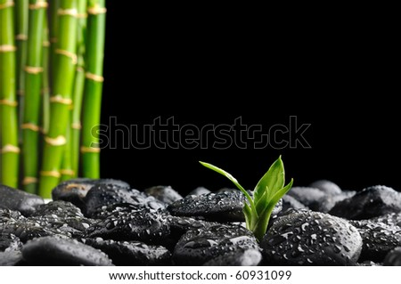 black zen stones and bamboo - stock photo