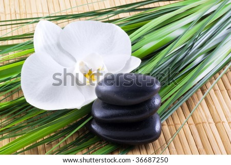 Black zen stones with white orchid and blades of grass on an bamboo background.