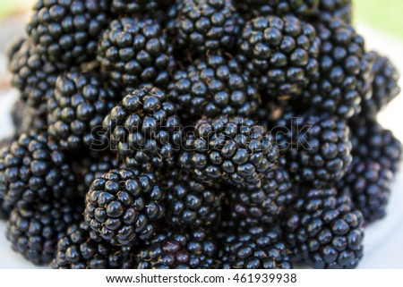 Blackberries closeup on wooden background