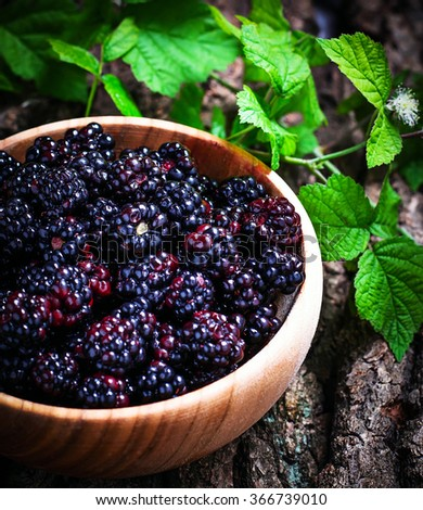 Blackberries  in  wooden bowl.  Selective focus, toned