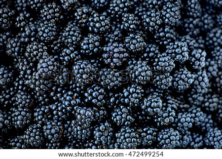 Blackberries juicy wild fruit raw food on background