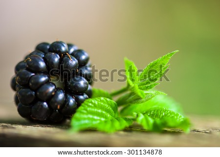 Blackberry and leaf on a wooden surface. Macro image. - stock photo