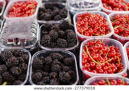 Blackberry and red currant in plastic containers at the market - stock photo