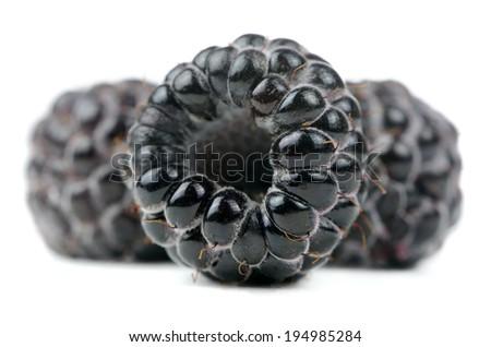 Blackberry Close-Up Isolated on White Background - stock photo
