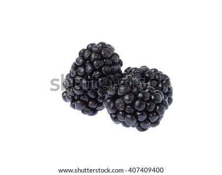 blackberry fruit isolated on white background - stock photo