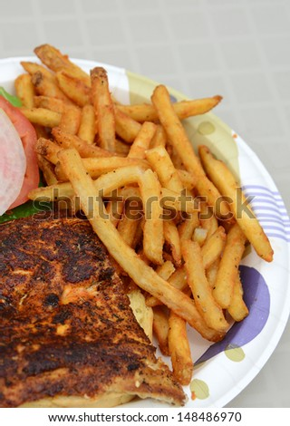 blackened fish sandwich and french fries on a plate for a picnic - stock photo