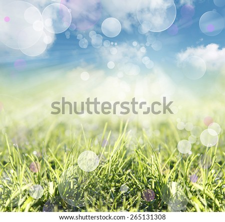 Blades of grass abstract spring background - stock photo