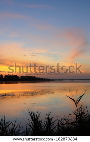 Blades of Grass and Calm Water at Twilight - stock photo