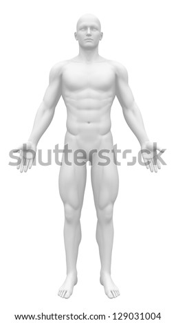 Blank Anatomy Figure - White Male Body - Front view - stock photo