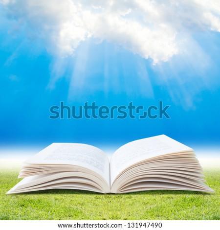 Blank Book Open - stock photo