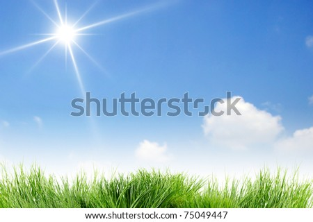 Blank clear blue sky and sun - stock photo