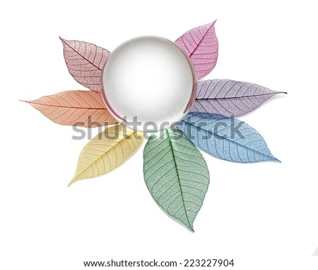 Blank crystal ball placed on multicolored skeleton leaves forming a flower shape on a white background - stock photo