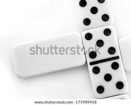Blank Domino on a white background - stock photo