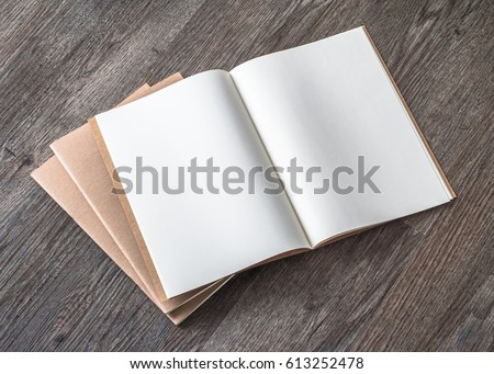 Photo Blank Open Square Format Brochure Stock Photo 177803282