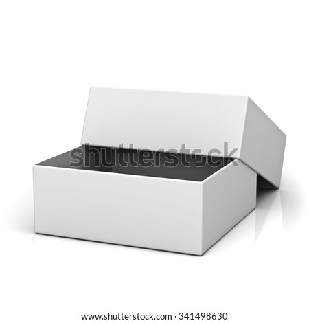 Blank open box with lid on white background with reflection - stock photo