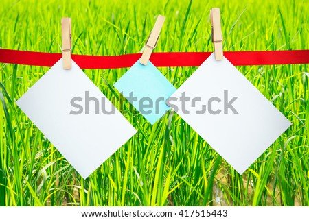 Blank paper card hanging on rice field  background.for idea.